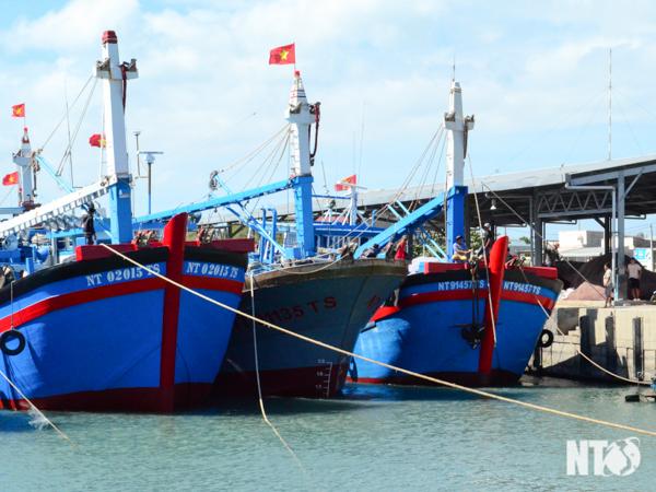 Thực hiện chính sách phát triển thủy sản tại xã Thanh Hải